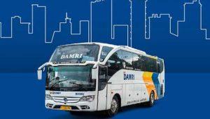 Jadwal Damri Cilegon dan Merak Bandara Soekarno Hatta