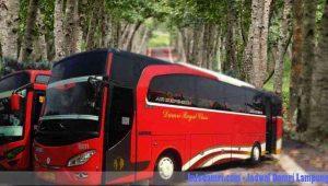 Jadwal Damri Lampung & Harga Tiket